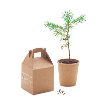 Zestaw sosnowy GROWTREE™