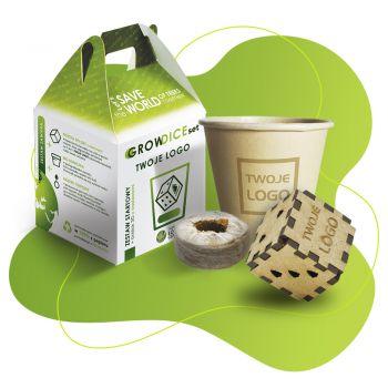 Eco set rosnący zestaw z kostką